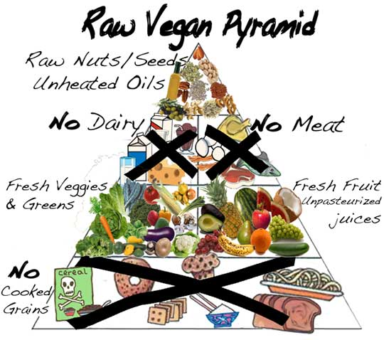 Healthy raw food diet for dogs
