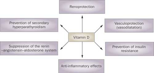 Vitamin D and hypertension: an update and review : Current ...
