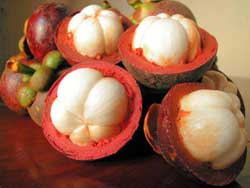 The Tropical Fruit: Mangosteen