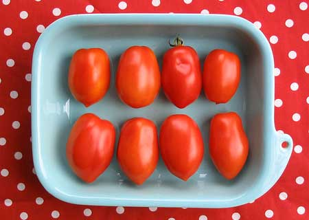Recipes with roma tomatoes